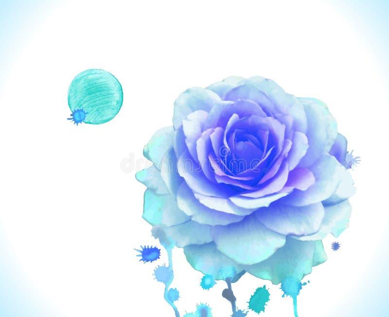 Роза сини вектора акварели иллюстрация вектора
