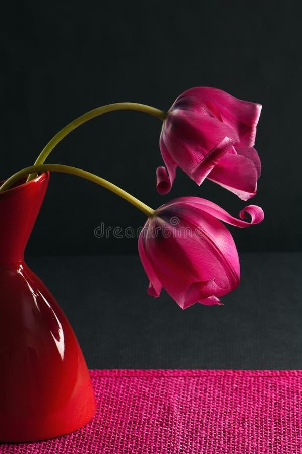 розовая ваза тюльпанов 2 стоковое изображение rf