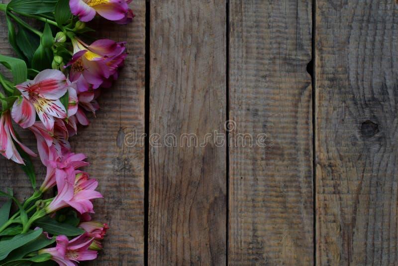 Розовая лилия цветет граница День ` s дня рождения, матери, ` s валентинки карточка дня, 8-ое марта, свадьбы или приглашение деко стоковое изображение rf