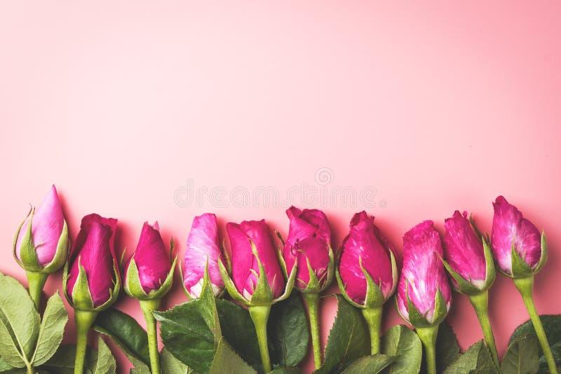 Розовая квартира взгляд сверху роз кладет границу с космосом экземпляра, для valentin стоковые изображения