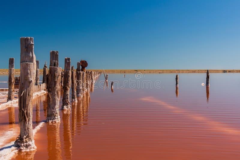 Розовая продукция Sivash озера соли и соль и терапевтическая грязь Область Украины Kherson стоковое изображение rf