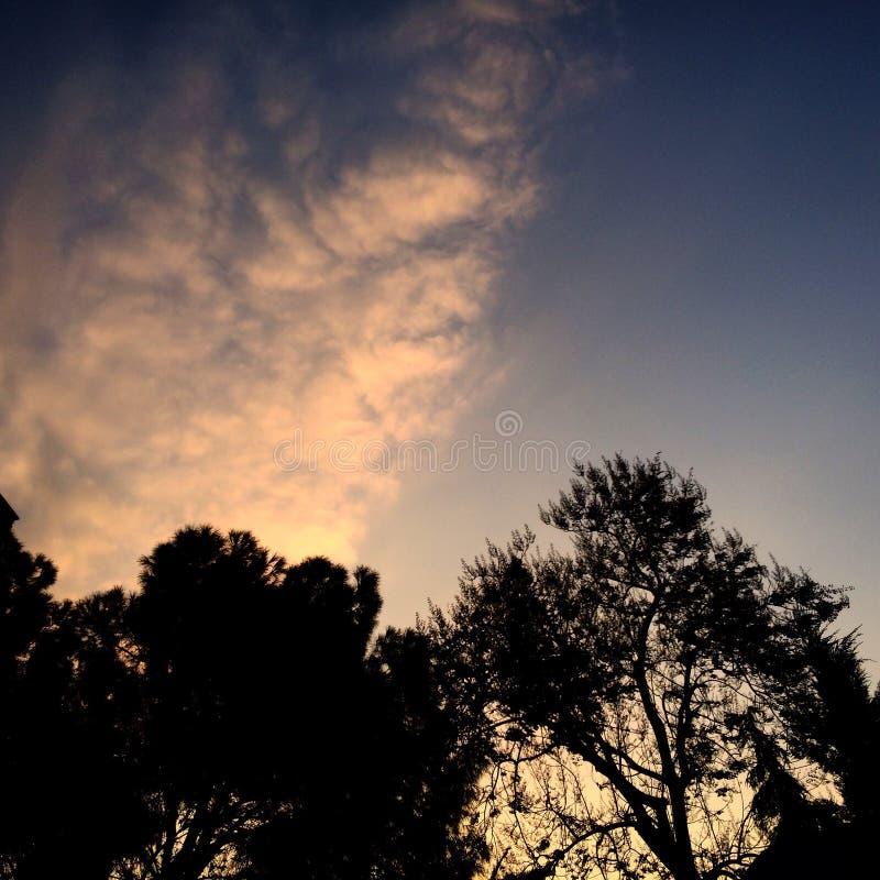 розовое небо стоковые изображения