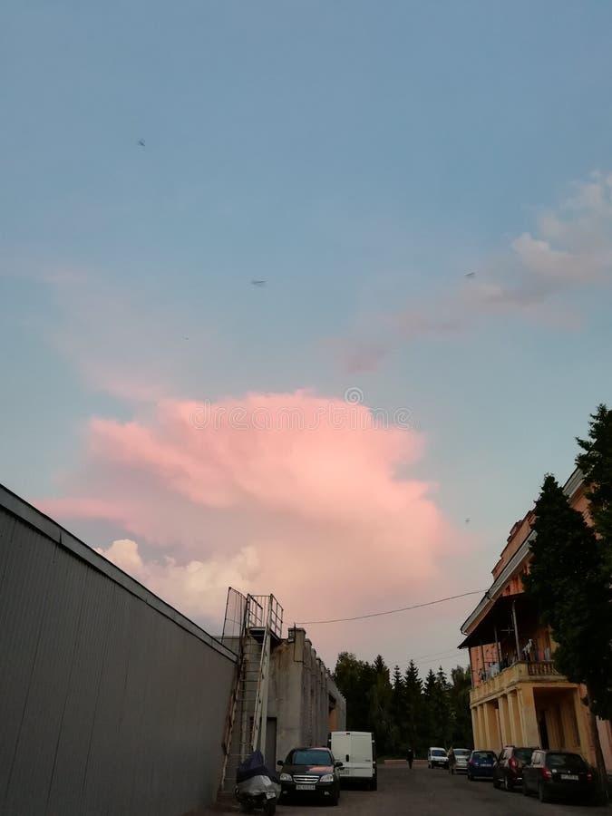 розовое облако-голубое небо над лесом стоковые изображения rf
