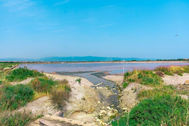 Розовое озеро в острове Сардинии стоковая фотография rf