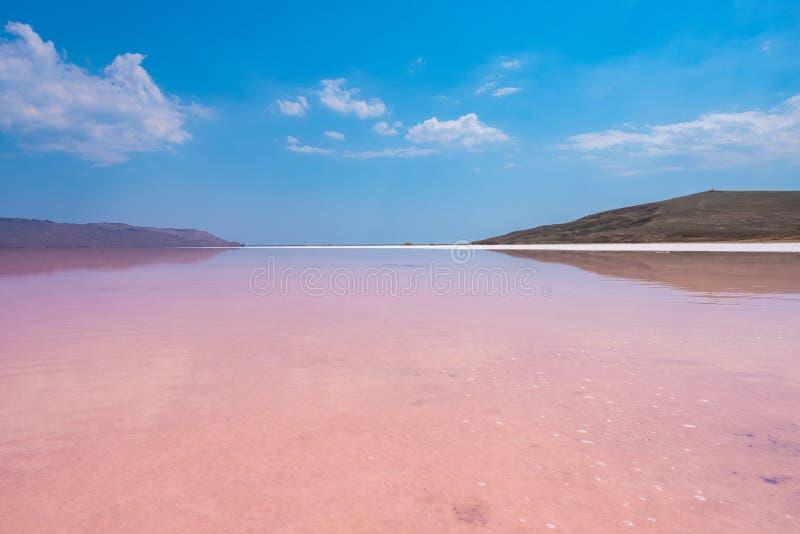 Розовое озеро соли Koyashskoe, Крым стоковые изображения rf