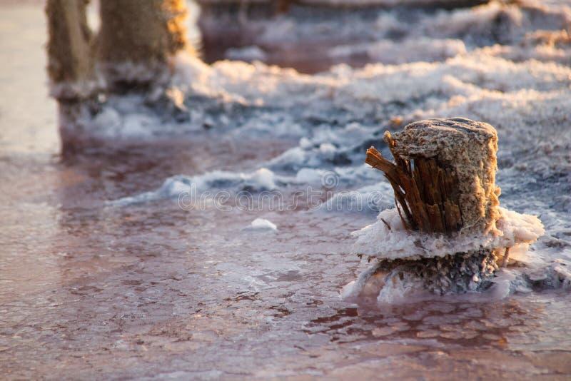 Розовое озеро соли Sivash Продукция соли, рассола, терапевтической грязи для салонов курорта Деревня Priozernoe области Украины K стоковое фото