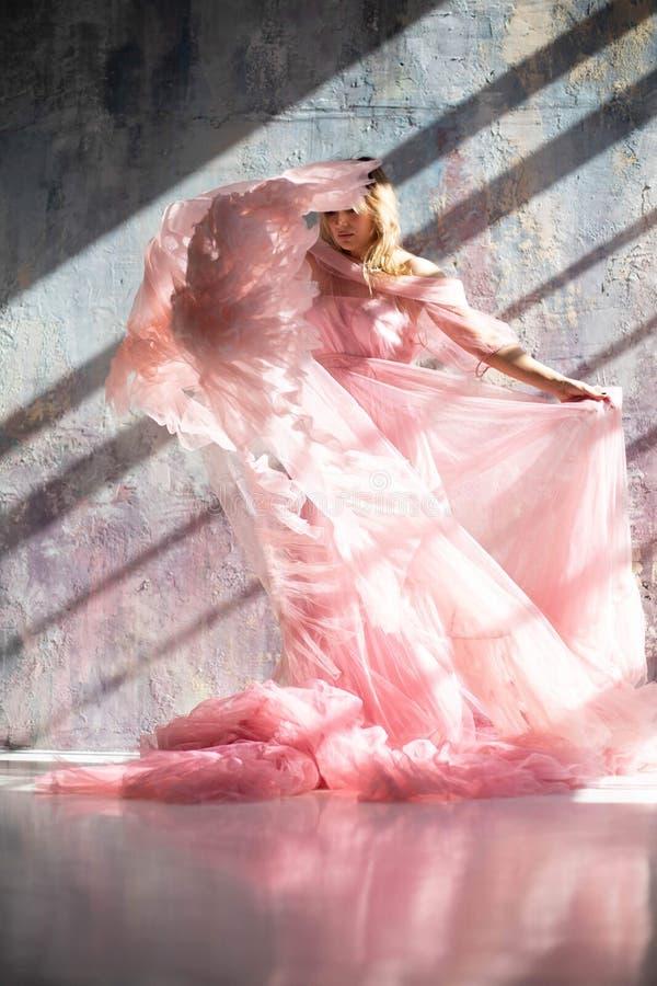 Розовое платье лебедя, замороженный момент стоковые изображения