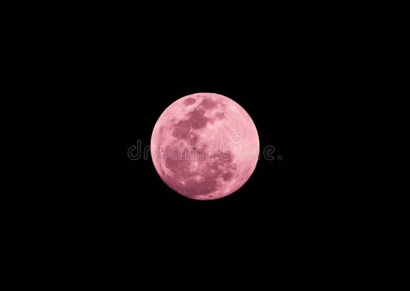 Розовое полнолуние на темной ночи