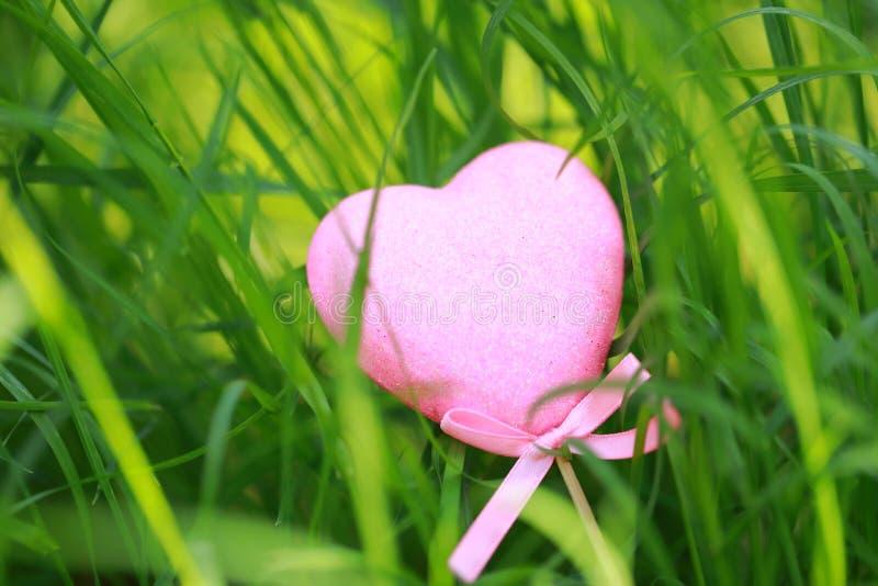 Розовой сформированный влюбленностью подарок игрушки пены лежа на лужайке зеленой травы в осени весны лета, конце вверх стоковое изображение