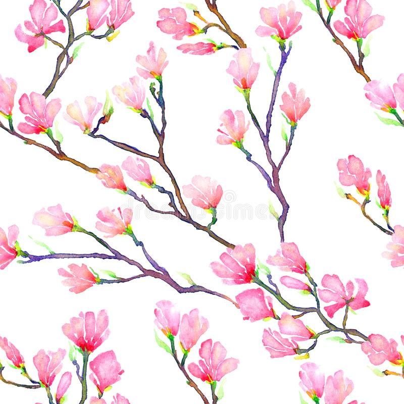 Розовые ветви магнолии, безшовный дизайн картины иллюстрация штока