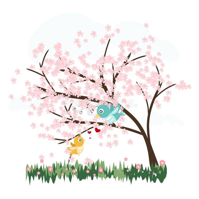 Розовые деревья Сакуры с вектором птиц влюбленности иллюстрация вектора