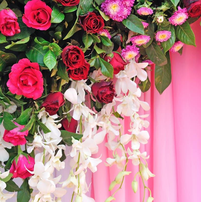 Розовые и белые цветки фона стоковая фотография
