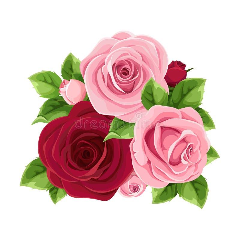 Розовые и бургундские розы также вектор иллюстрации притяжки corel иллюстрация вектора