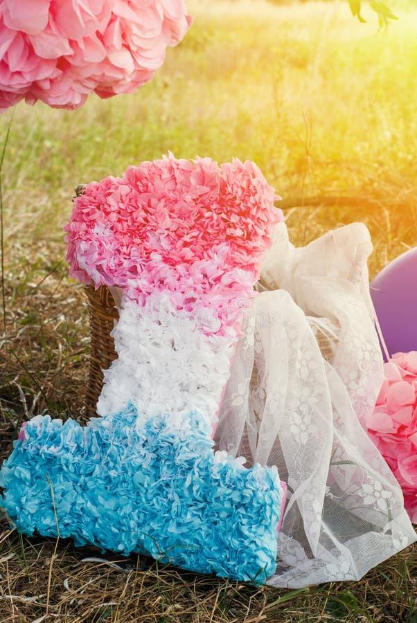 Розовые и голубые pompoms на первой вечеринке по случаю дня рождения внешней стоковое фото rf