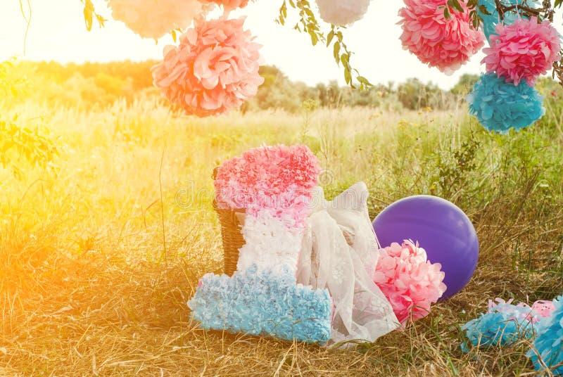 Розовые и голубые pompoms на первой вечеринке по случаю дня рождения внешней стоковые фото