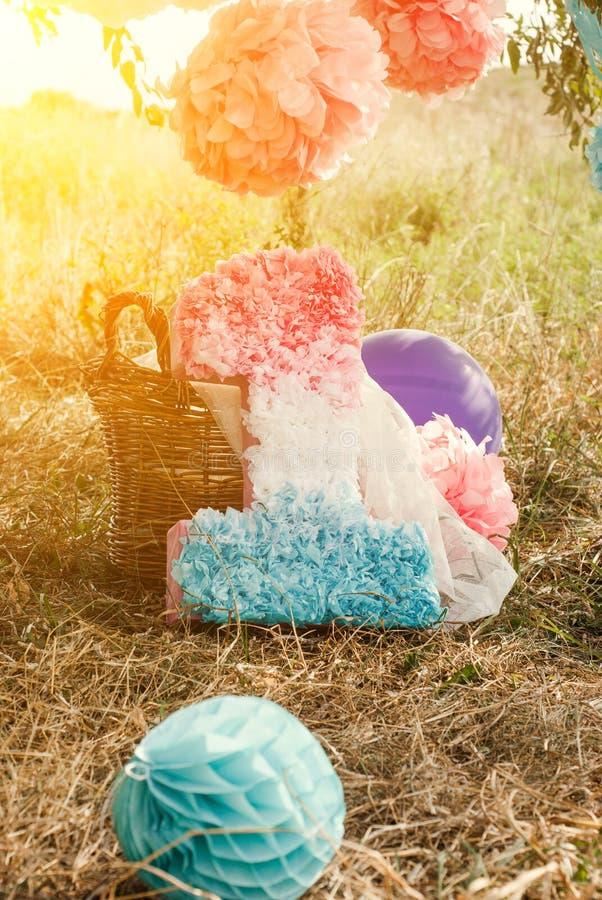 Розовые и голубые pompoms на первой вечеринке по случаю дня рождения внешней стоковые фотографии rf