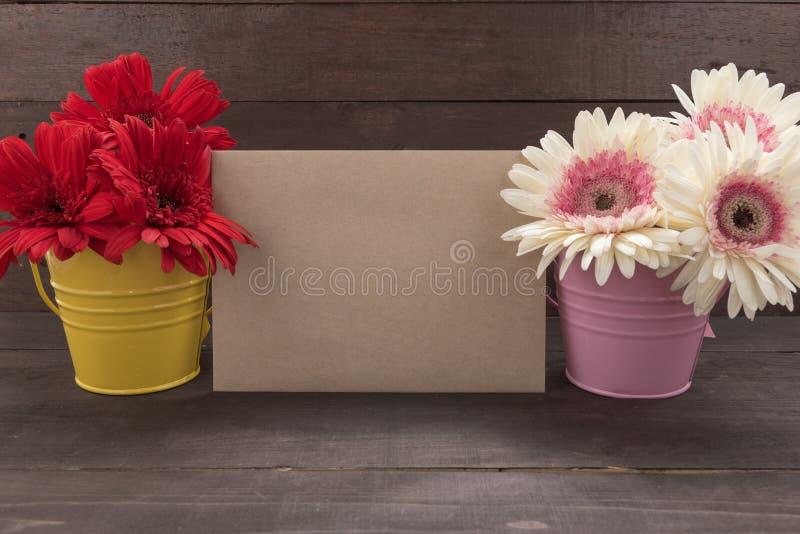 Розовые и красные цветки gerbera в цветочных горшках, на woode стоковое изображение