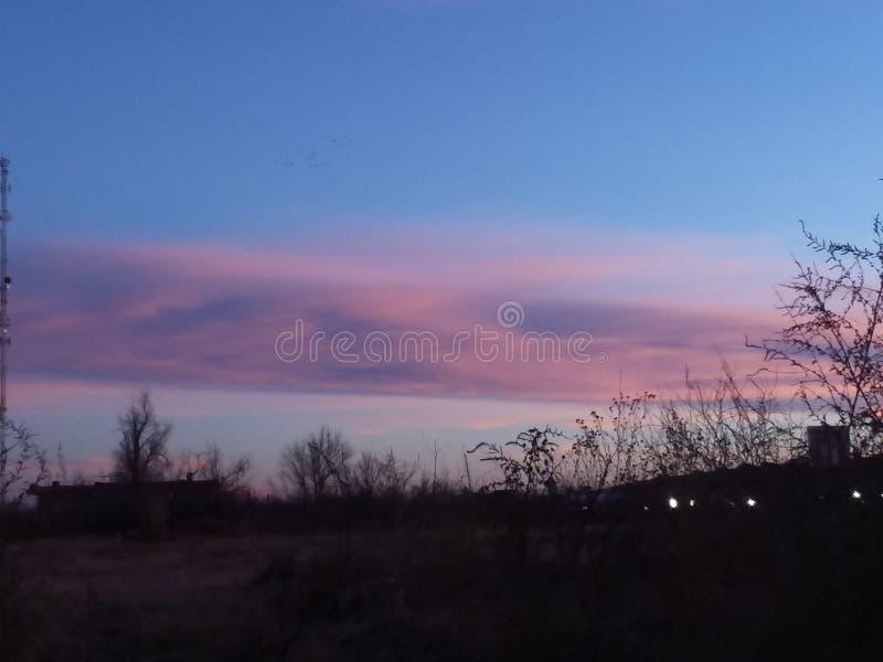 Розовые облака стоковое фото rf