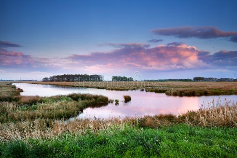 Розовые облака над болотами на заходе солнца стоковое изображение rf