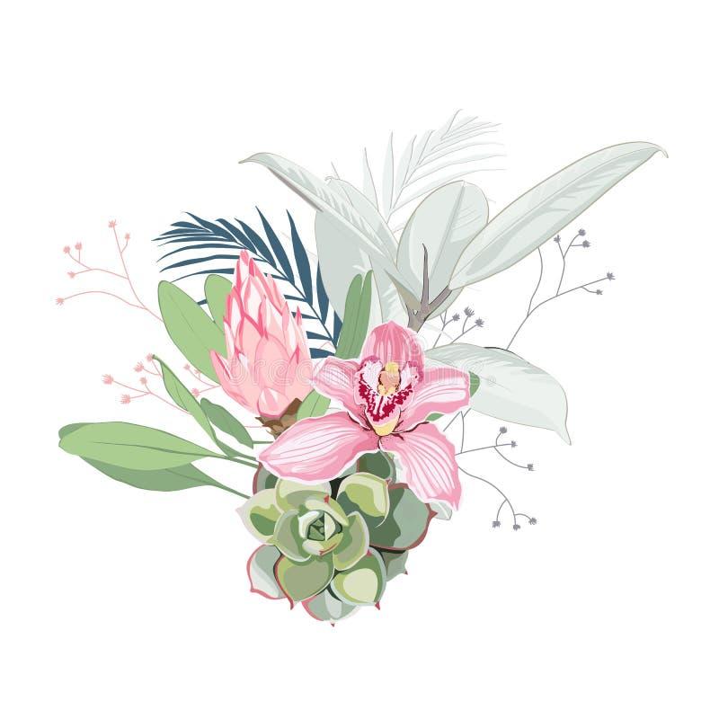 Розовые орхидея, protea, травы, succulent, листья ладони и букет растительности иллюстрация штока
