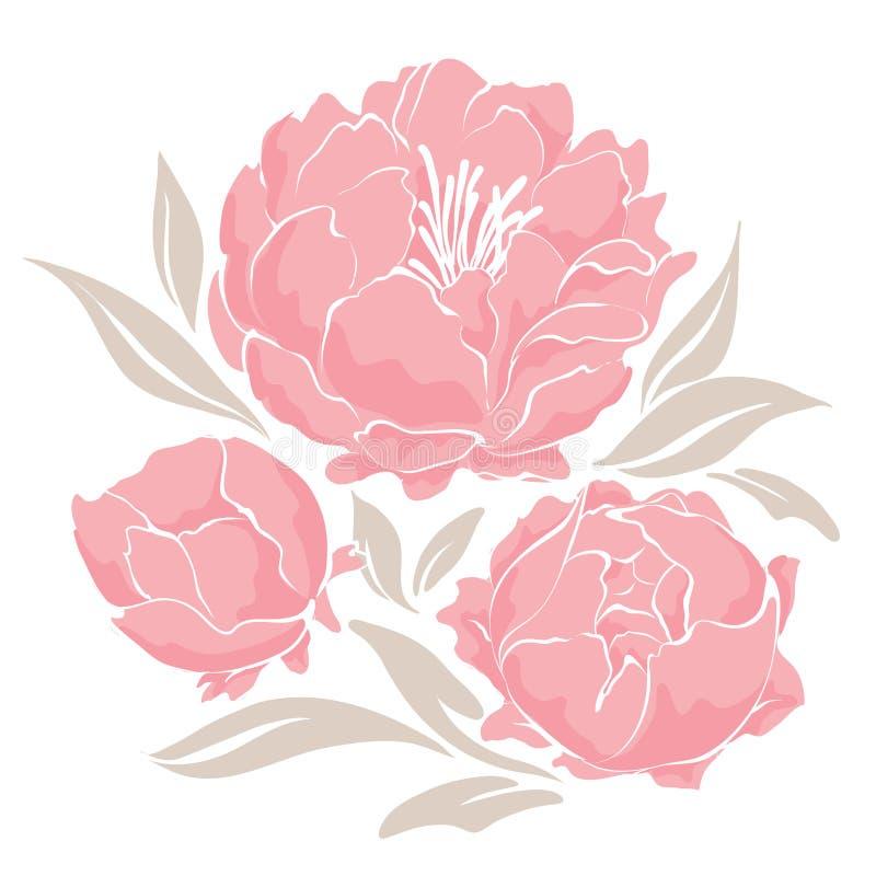 Розовые пионы бесплатная иллюстрация