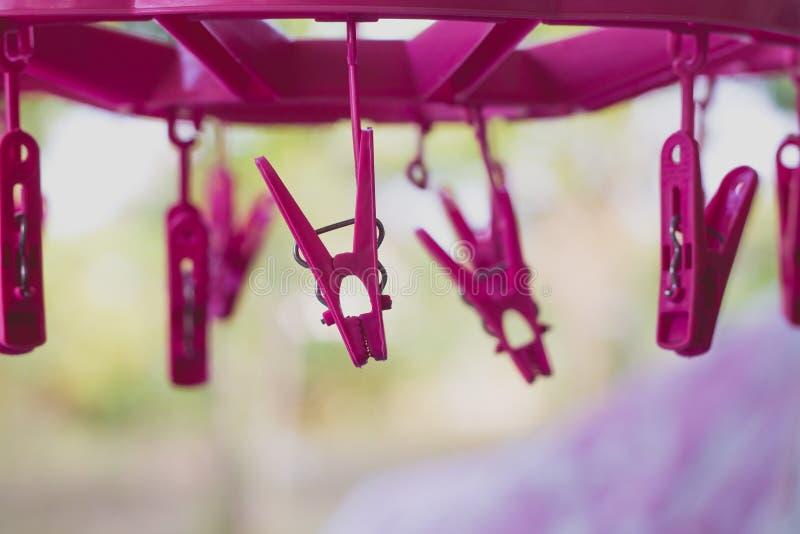 Розовые пластичные зажимки для белья стоковое изображение rf