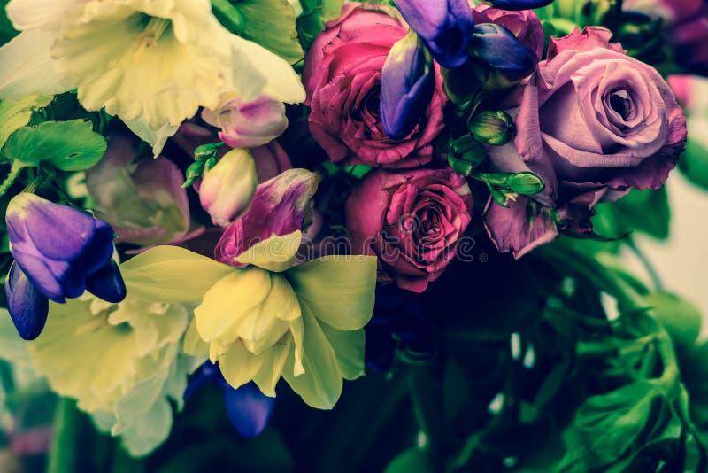 Розовые розы, весеннее время, colorfull стоковая фотография rf