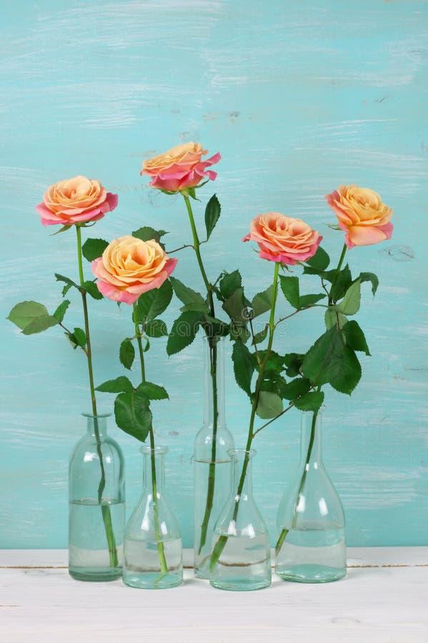 Розовые розы в стеклянных бутылках стоковое фото
