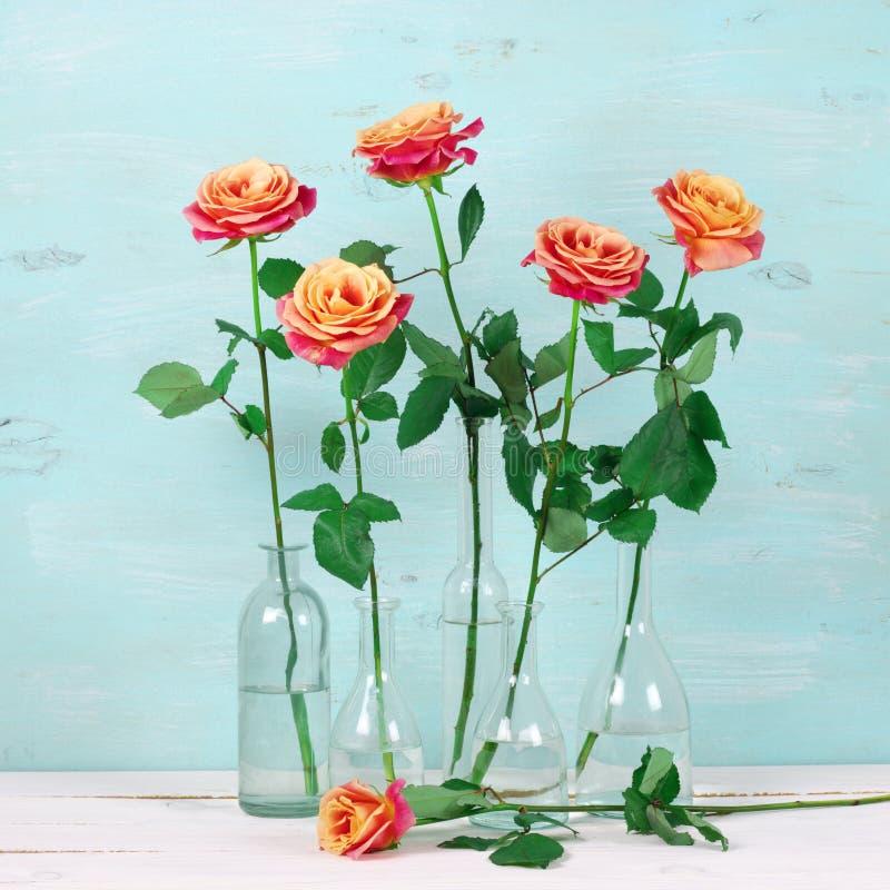 Розовые розы в стеклянных бутылках стоковые фотографии rf