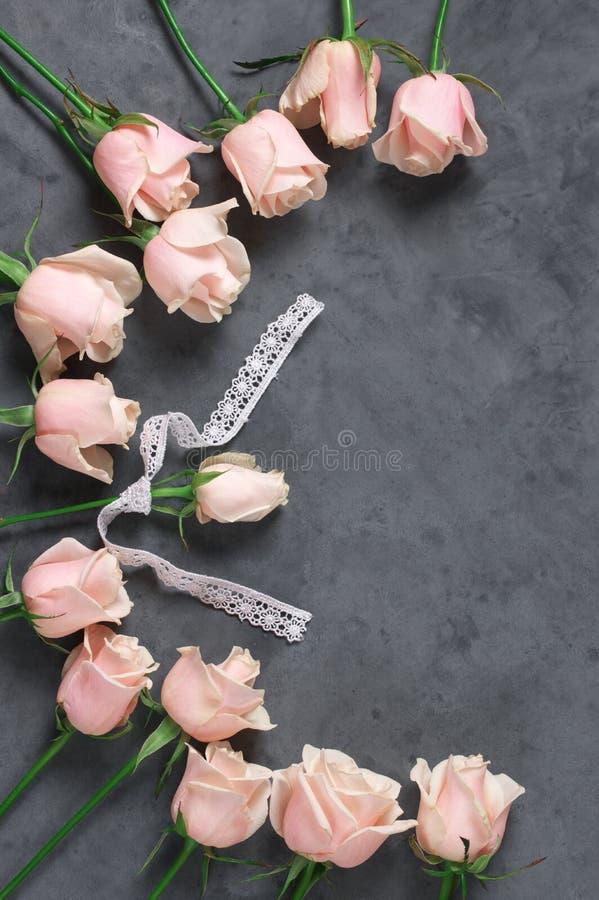 Розовые розы на серой предпосылке стоковое изображение rf