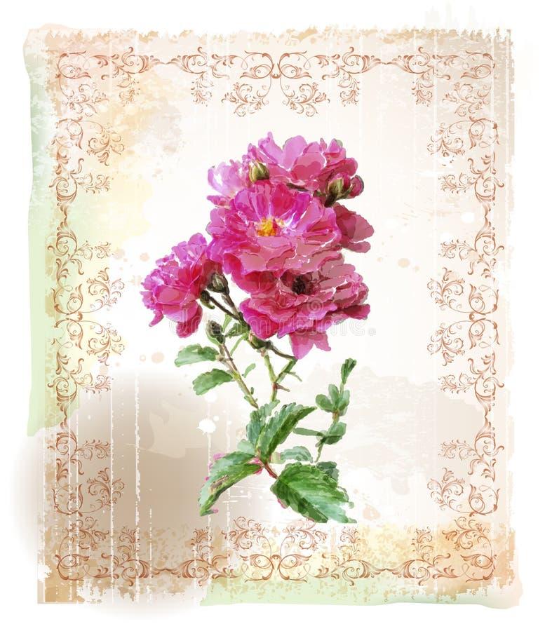 Download Розовые розы иллюстрация вектора. иллюстрации насчитывающей день - 40579704