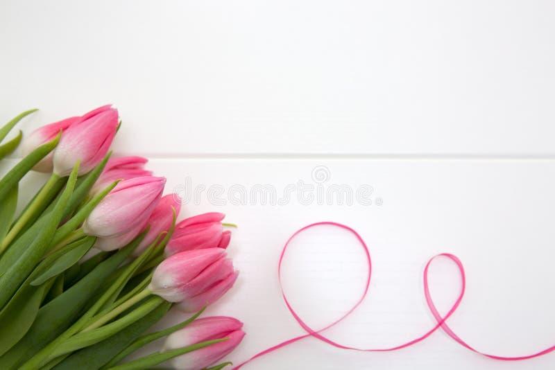 Розовые тюльпаны и петля изолированные на белой деревянной предпосылке стоковая фотография