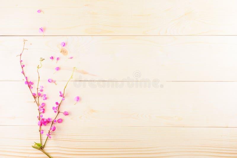 Розовые цветки на деревянном стоковая фотография