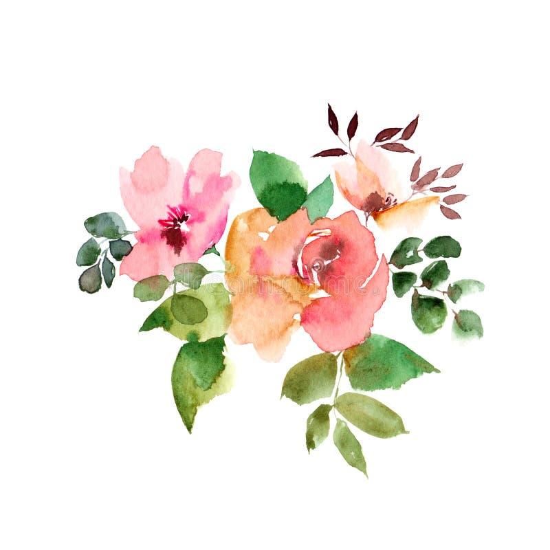 Розовые цветки Розы акварели вектор детального чертежа предпосылки флористический Вянуть розовые цветки голубое приветствие конст бесплатная иллюстрация