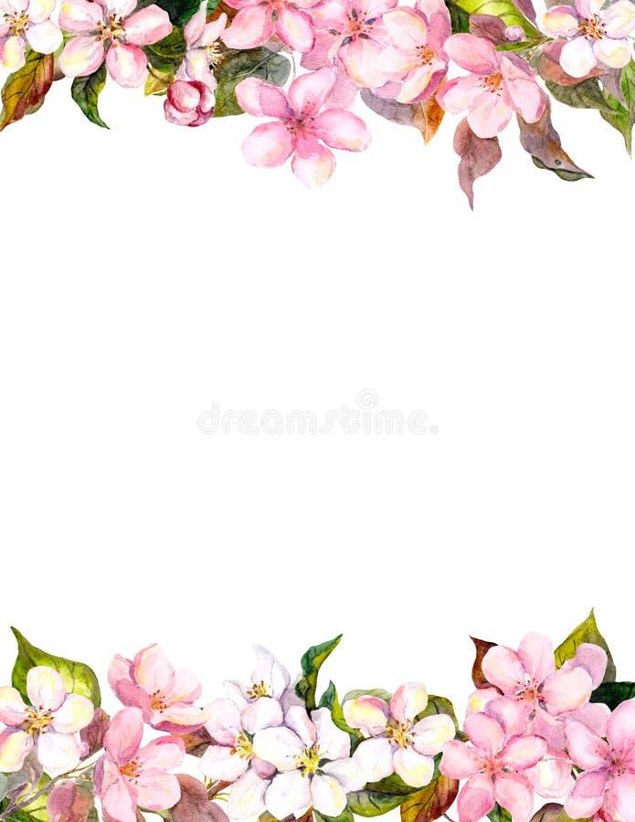 Розовые цветки - яблоко, вишневый цвет Флористическая рамка для открытки акварель иллюстрация штока