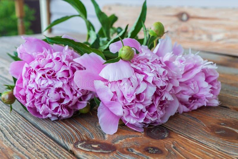 Розовые цветки peonie против старой деревянной предпосылки стоковые изображения rf