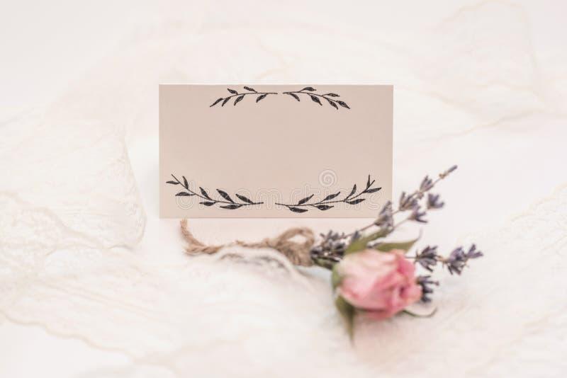Розовые цветок и лепестки на пустом куске бумаги изолированном на белизне r Женственная концепция r стоковые фотографии rf