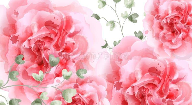 Розовый вектор предпосылки акварели роз Взгляд сверху Карта приглашения, свадебная церемония, чувствительная открытка, день женщи иллюстрация штока