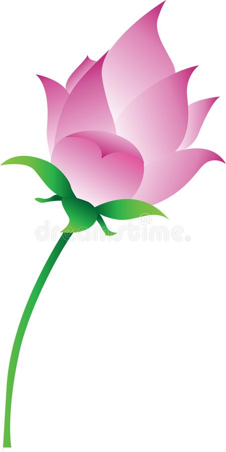 Розовый вектор цветка лотоса иллюстрация штока