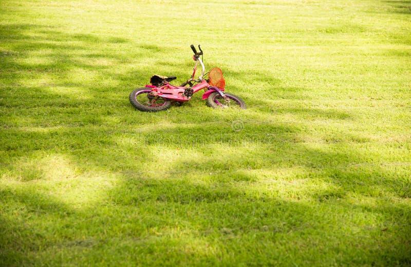 Розовый велосипед падая на зеленую траву в парке стоковая фотография