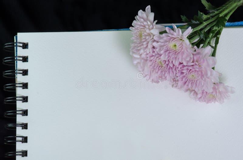 Розовый георгин на белом sketchbook стоковое изображение rf