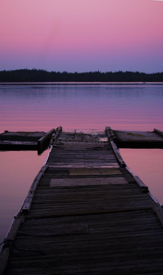 Розовый горизонт стоковые фотографии rf