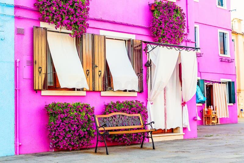 Розовый дом с розовыми цветками и заводами Славный стенд под окнами Красочный дом в острове Burano около Венеции, Италии стоковое фото rf