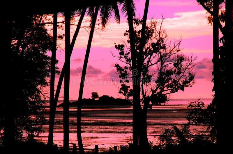 розовый заход солнца стоковое фото