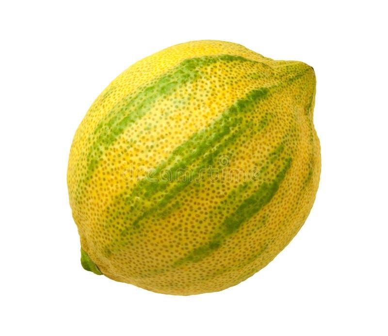 Розовый изолированный лимон стоковые изображения rf