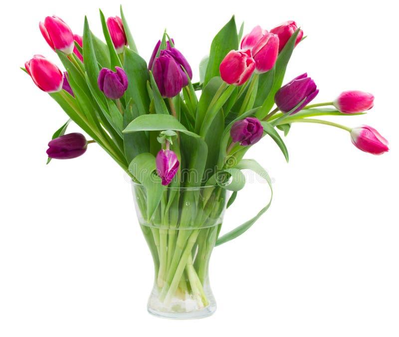 Розовый   и фиолетовый букет тюльпанов в вазе стоковое изображение