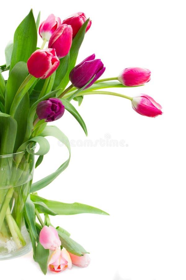 Розовый   и фиолетовый букет тюльпанов стоковые фото