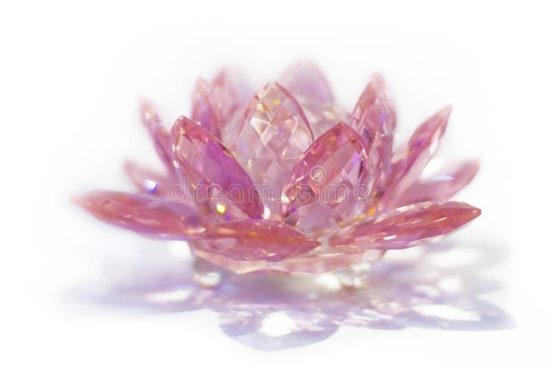 Розовый кристаллический лотос стоковая фотография