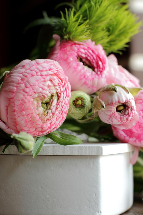 Розовый лютик на белой присутствующей коробке стоковая фотография
