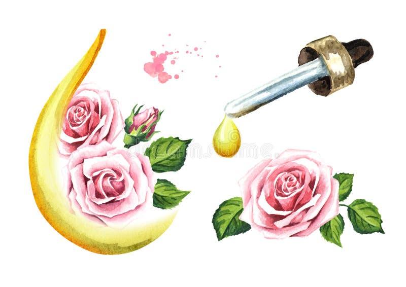 Розовый набор цветка и эфирного масла aromatherapy спа Иллюстрация акварели нарисованная рукой, изолированная на белой предпосылк иллюстрация вектора